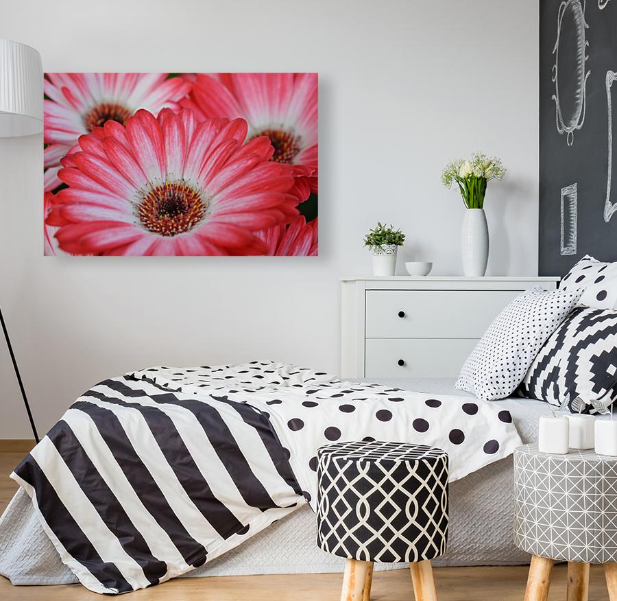 Red & White Flower Photograph  Art