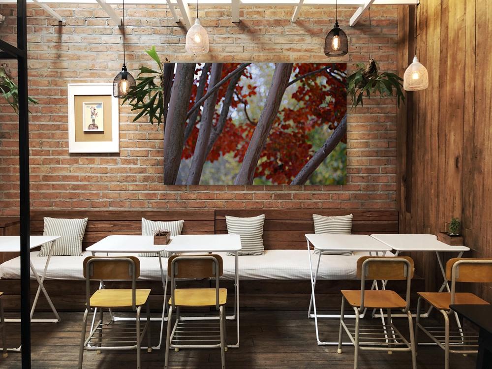 Fall Foliage Photograph  Art