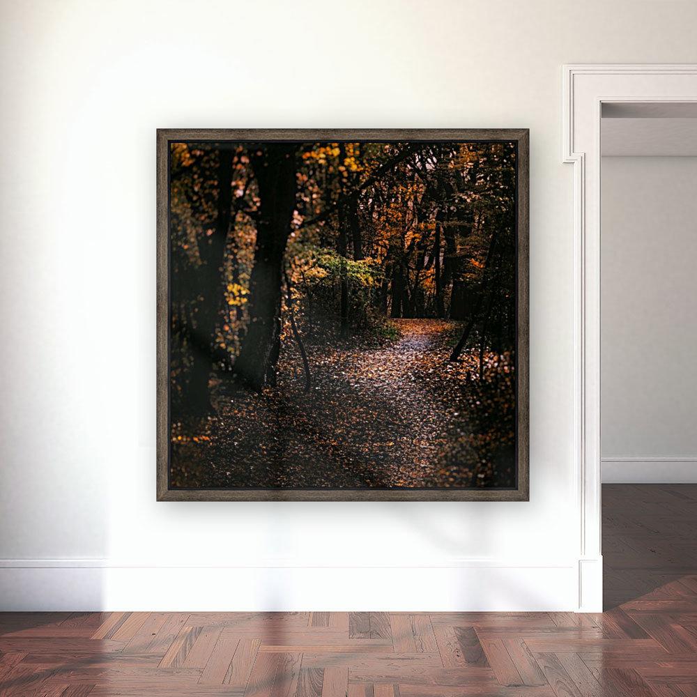 Forest 2_OSG  Art