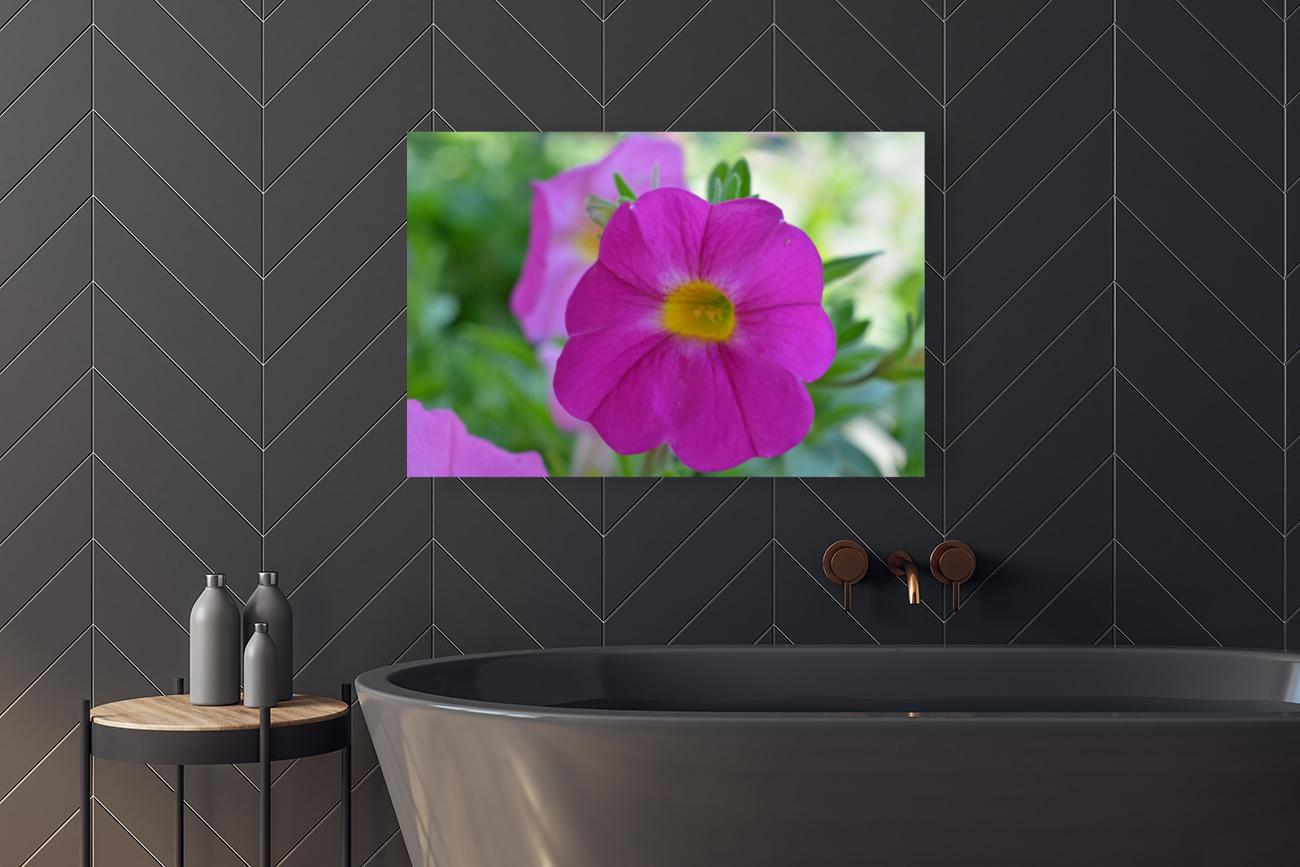 Purple Flower Photograph  Art