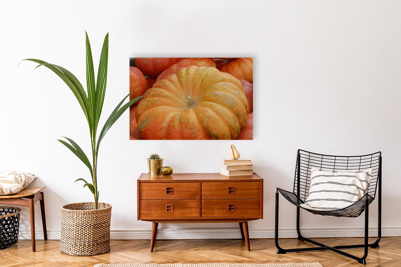 Beautiful Pumpkins Photograph  Art