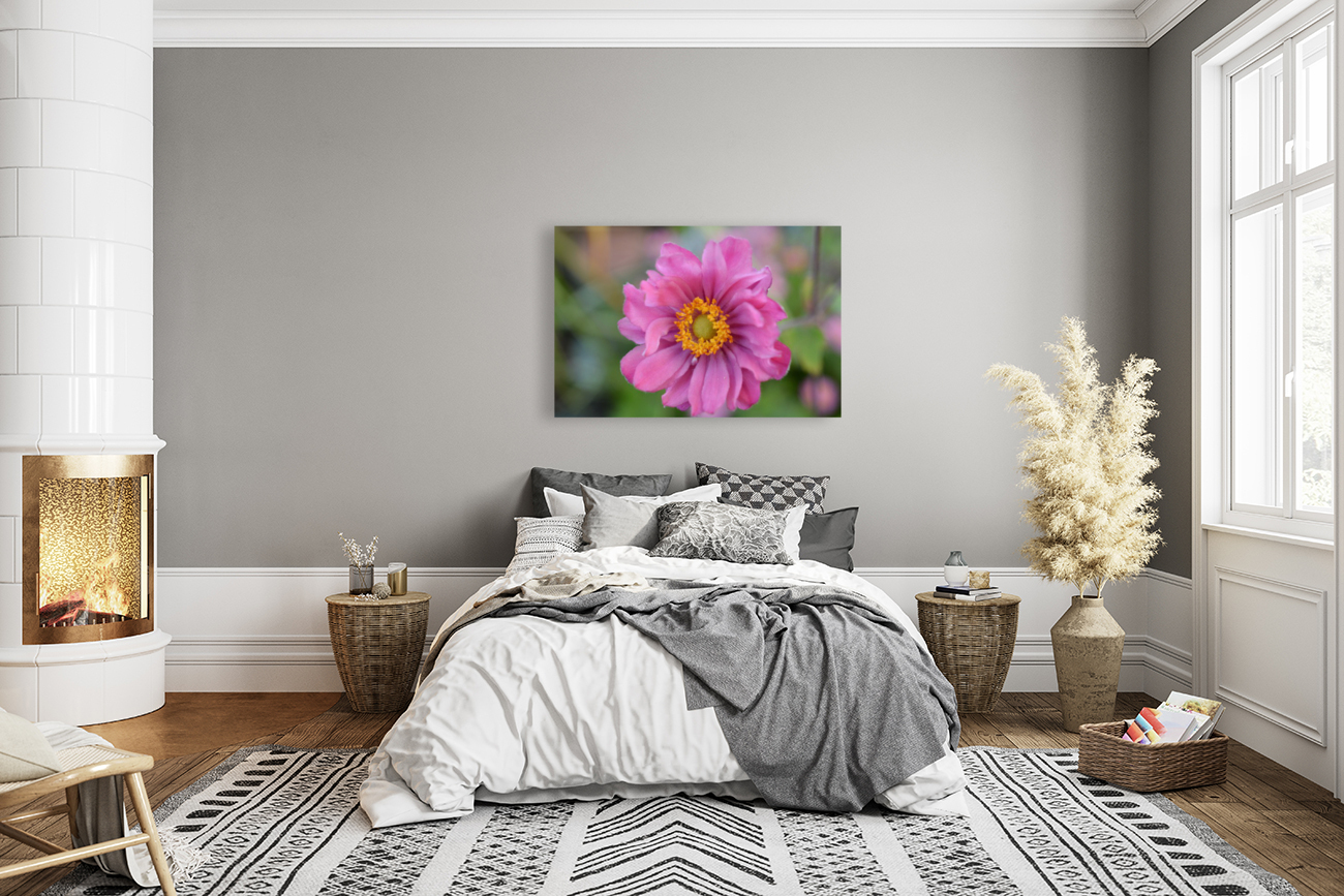 Pink Flower Photography  Art