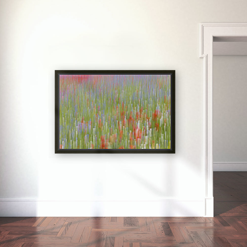 La fioritura di Castelluccio with Floating Frame