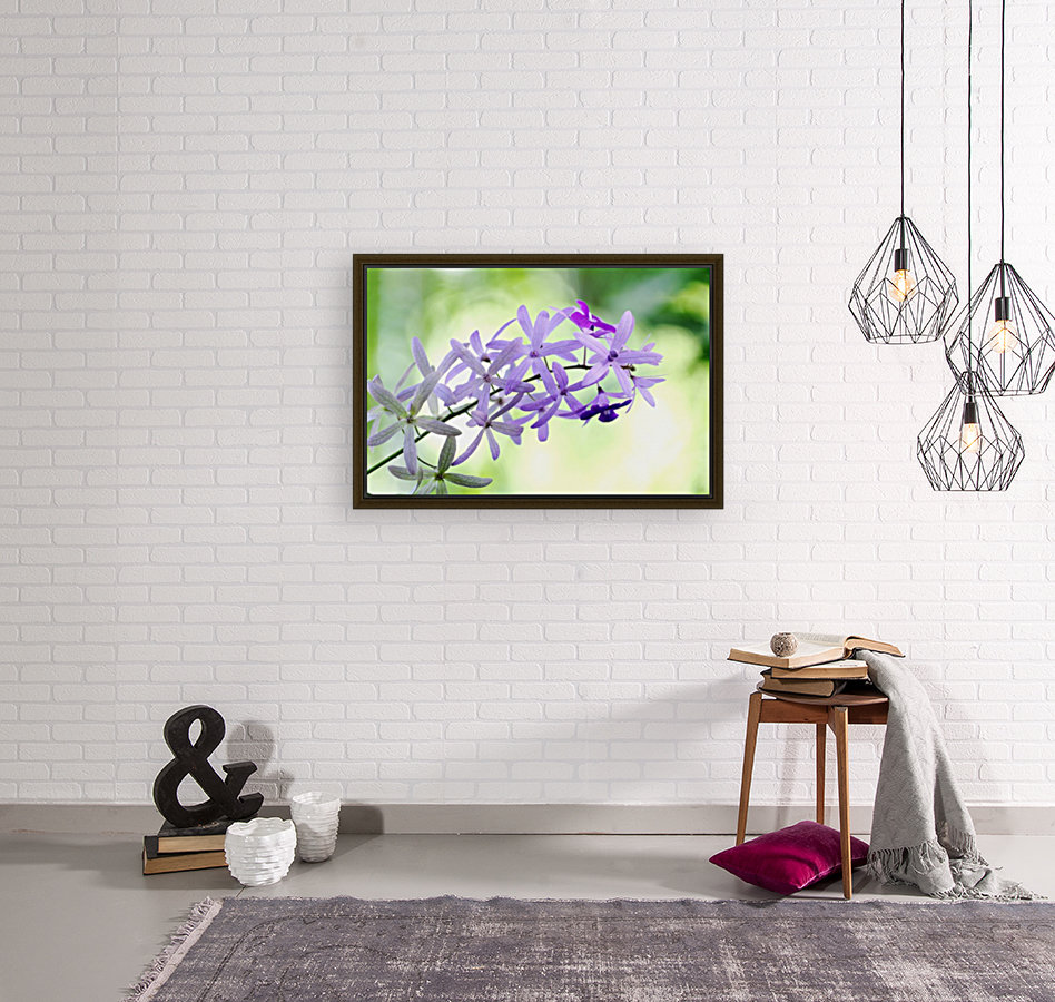 Purple orchid  Art