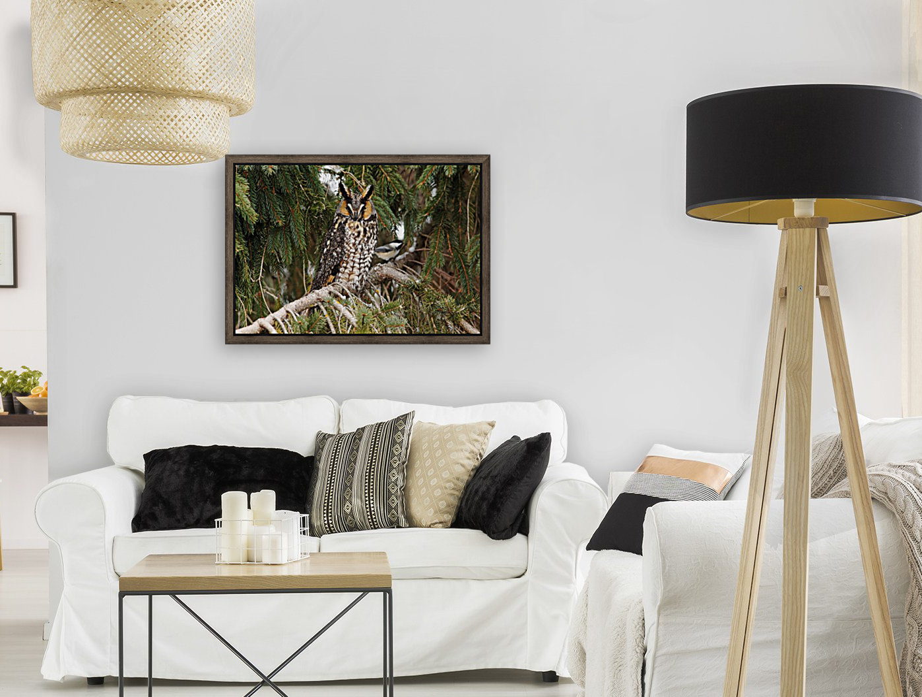 Brave Chickadee  Art