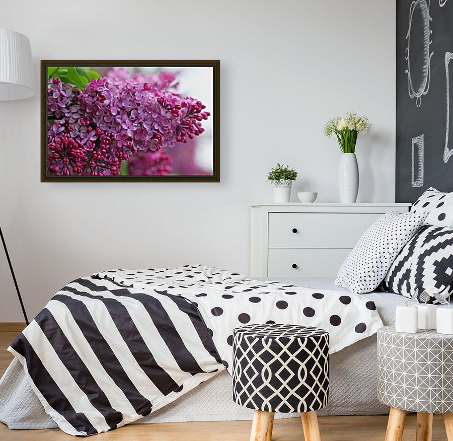 Lilac Heaven with Floating Frame