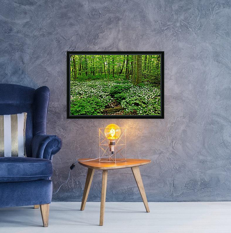 Trillium Woods VI  Art