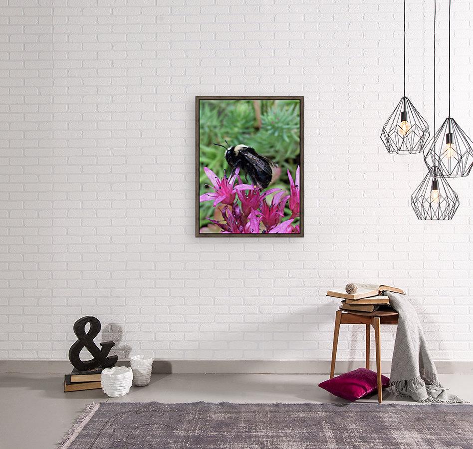 Black Bumble Bee  Art