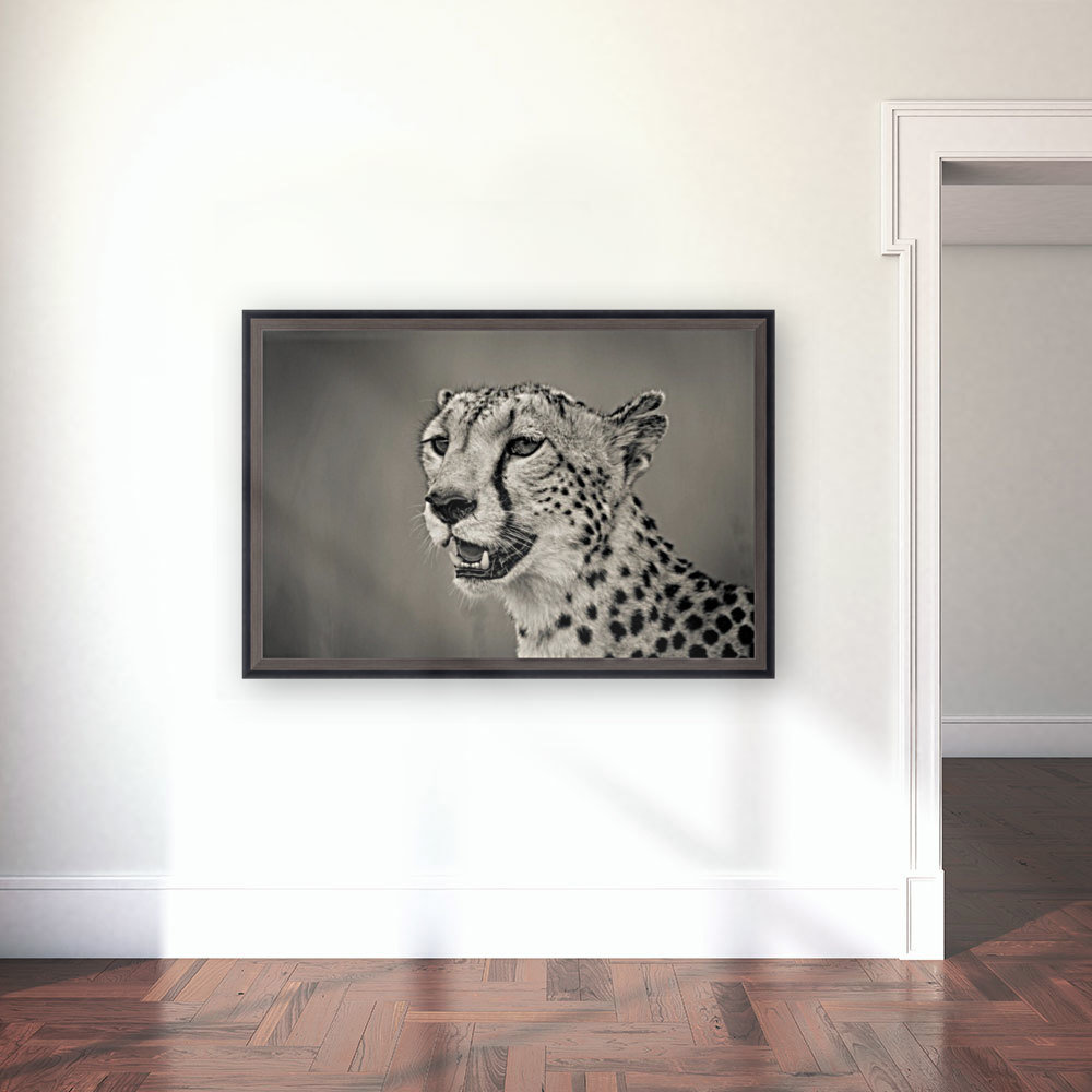 Cheetah Portrait  Art