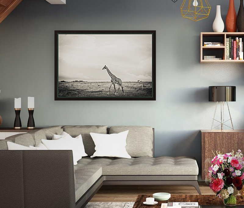 Zebrascape  Art