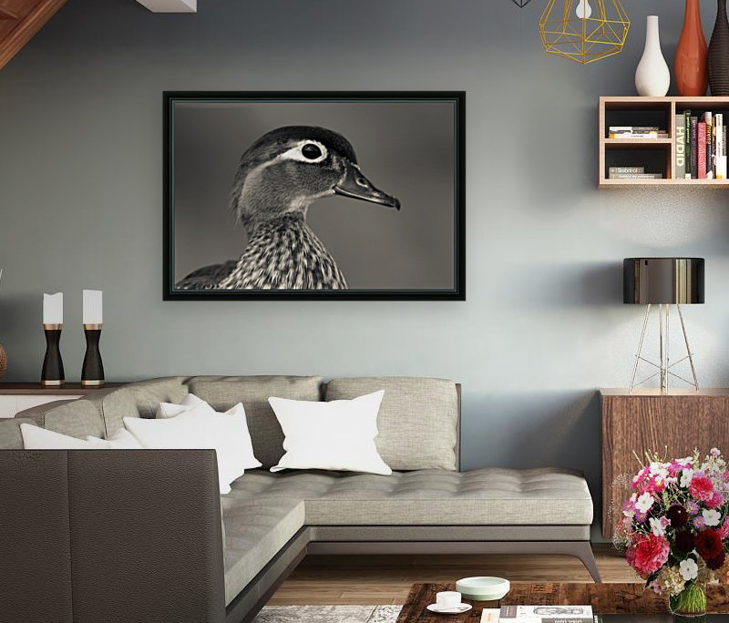 Wood Duck with Floating Frame