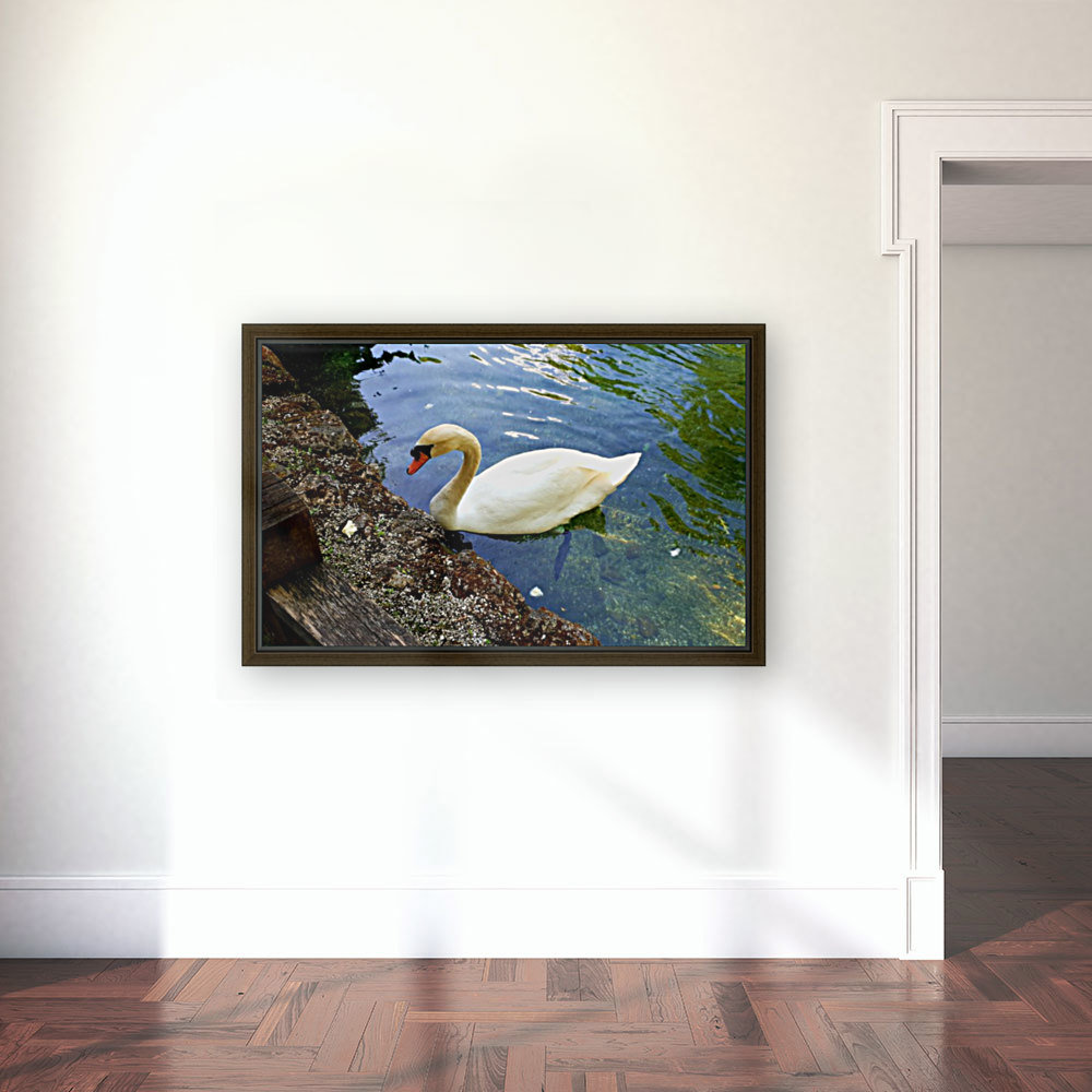 swan 16 with Floating Frame