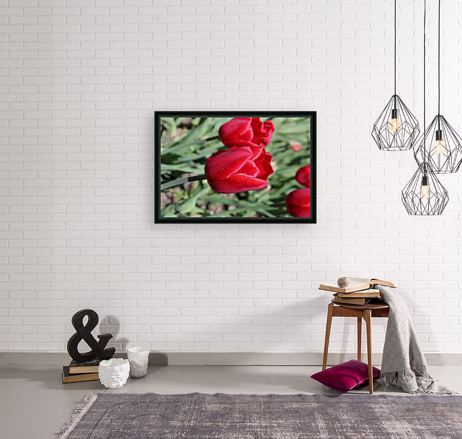 Tulips Red with Floating Frame