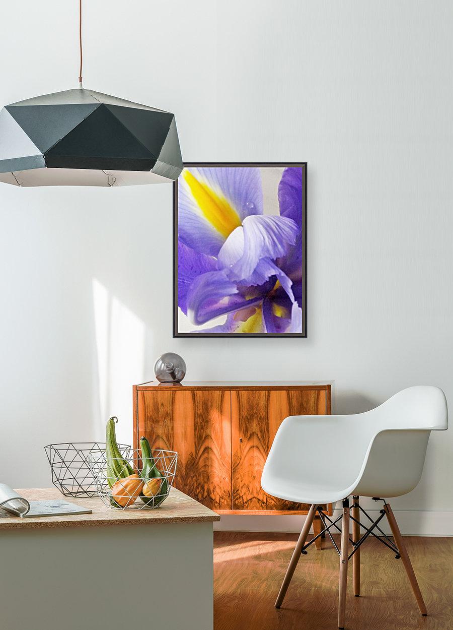 Inner Iris  Art