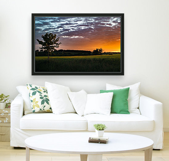 Morning Field with Floating Frame