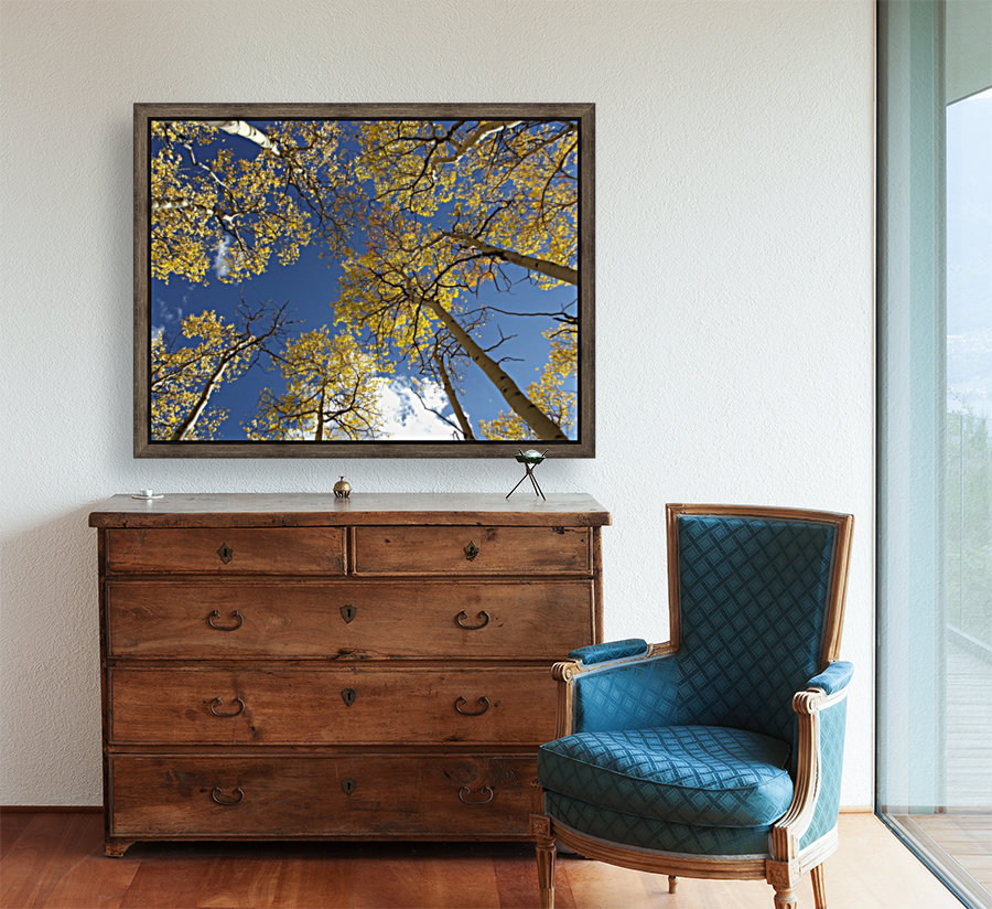 Aspens To Heaven with Floating Frame