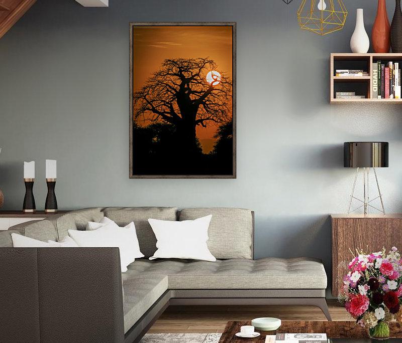 Baobab Sunset  Art