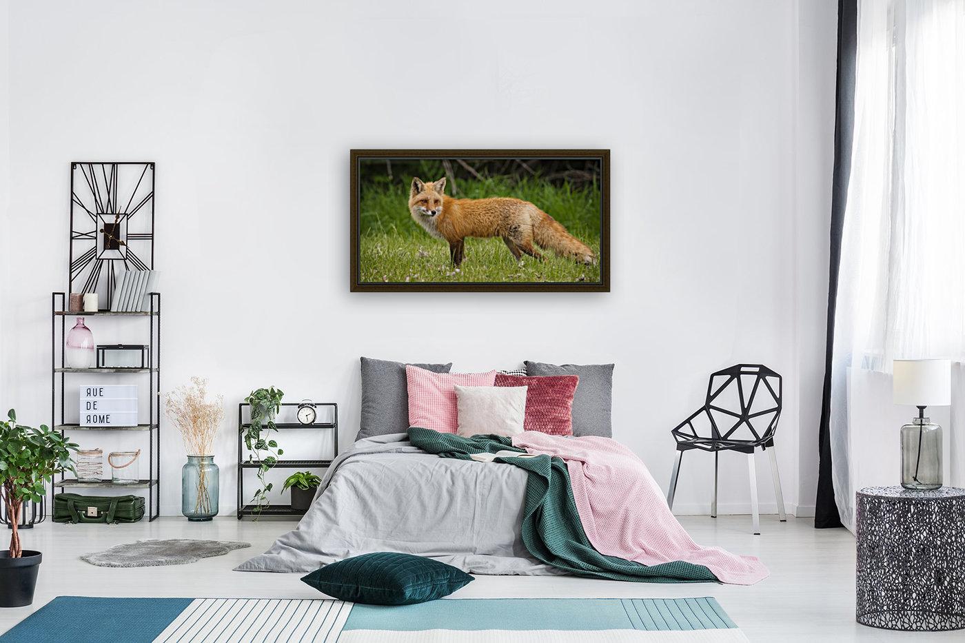 Red Fox Beauty  Art