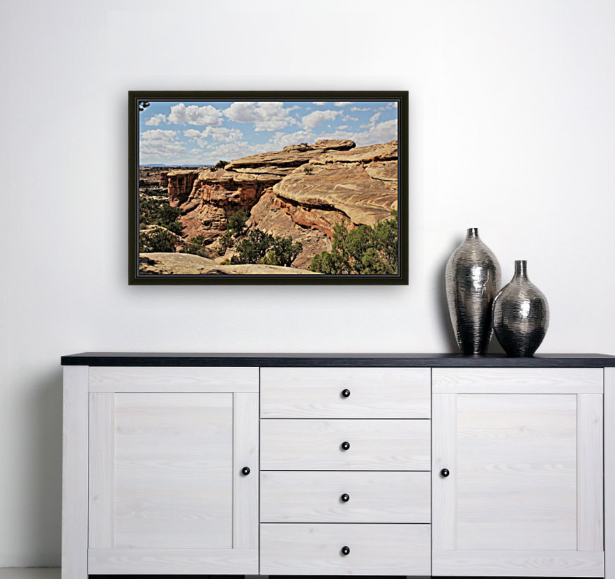 Canyonlands  Art