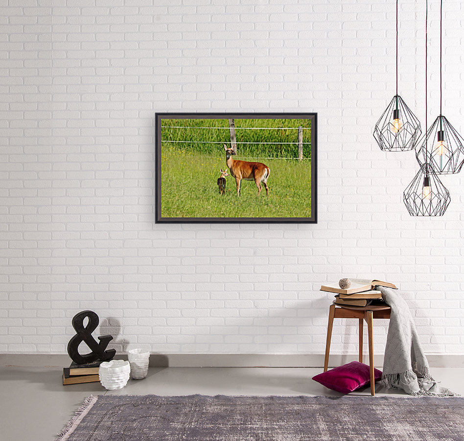 Whitetail Doe And Fawn with Floating Frame