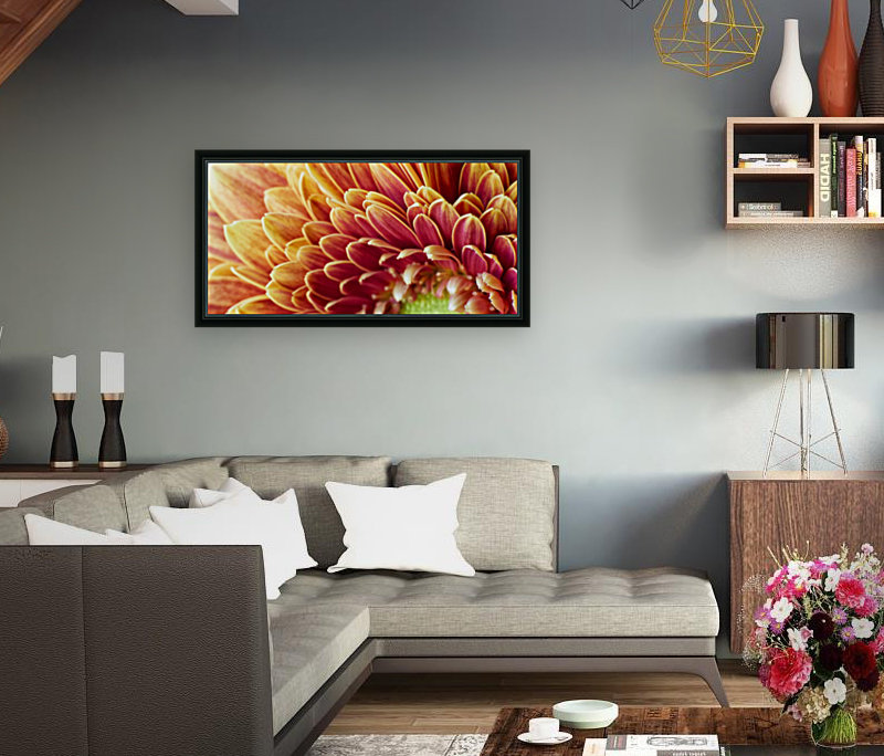 Golden Chrysanthemum with Floating Frame