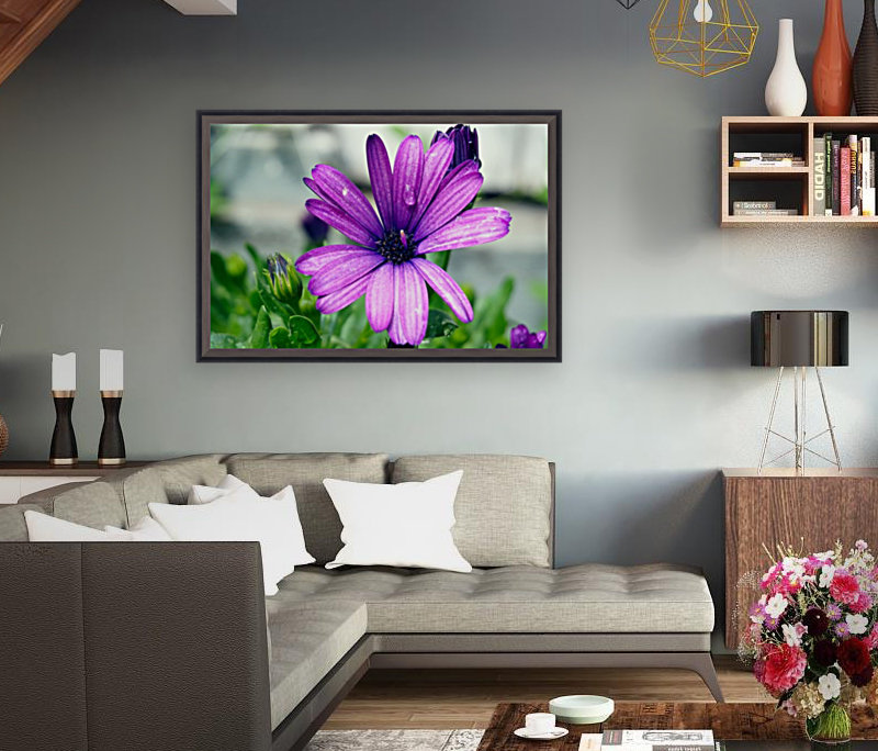Waterdrop On Purple Flower with Floating Frame