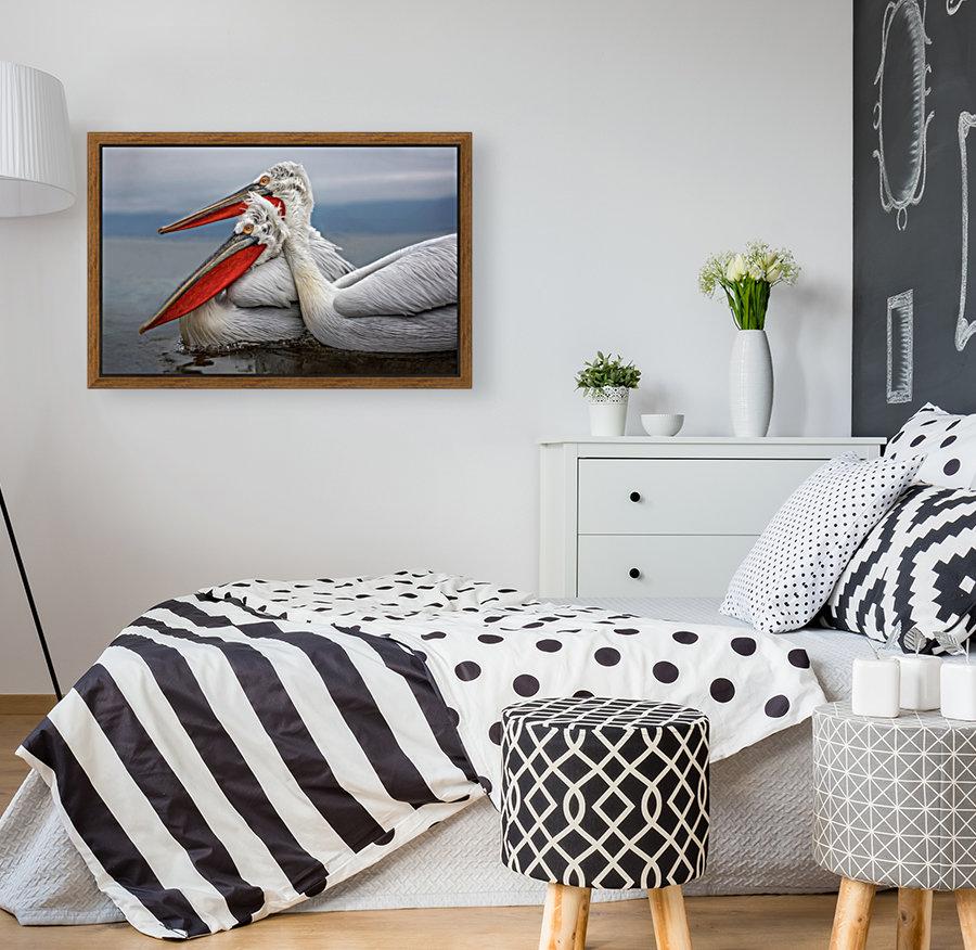 Dalmatian Pelicans  Art