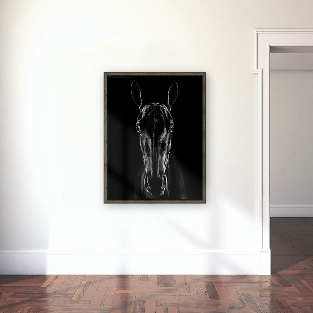 The Horse in Noir with Floating Frame