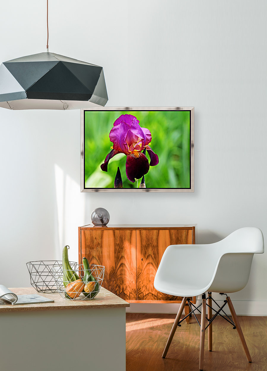 Bold And Beautiful with Floating Frame