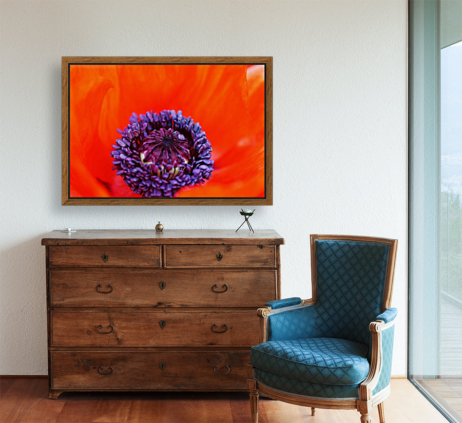 Poppy Whorl with Floating Frame