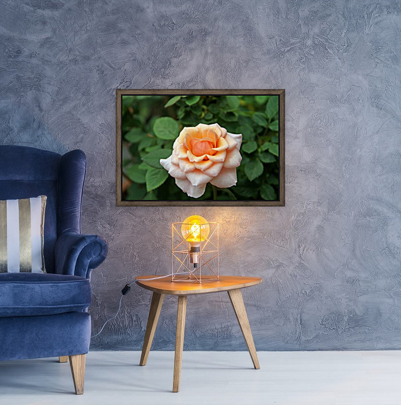 Pretty as a Rose II  Art