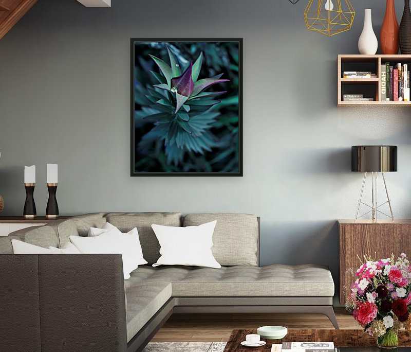 Funky flora with Floating Frame