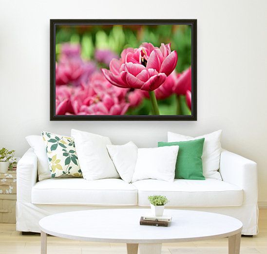 Plants - Flowers - 013  Art