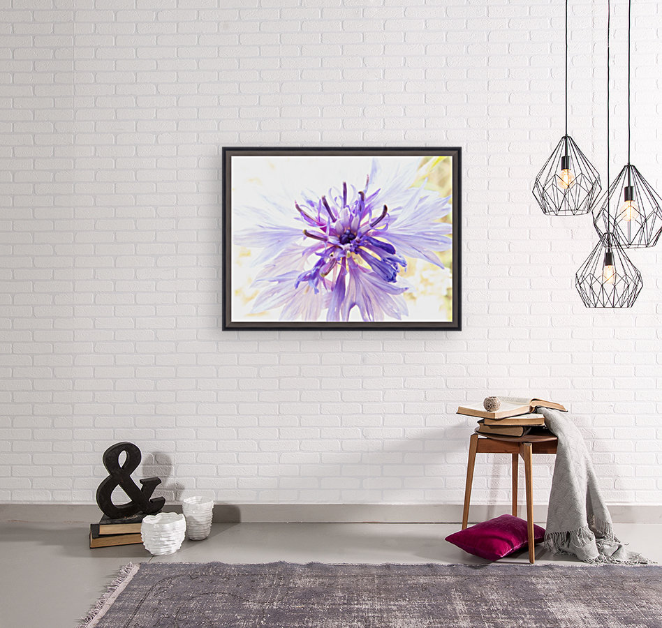 Purple Flower Burst with Floating Frame
