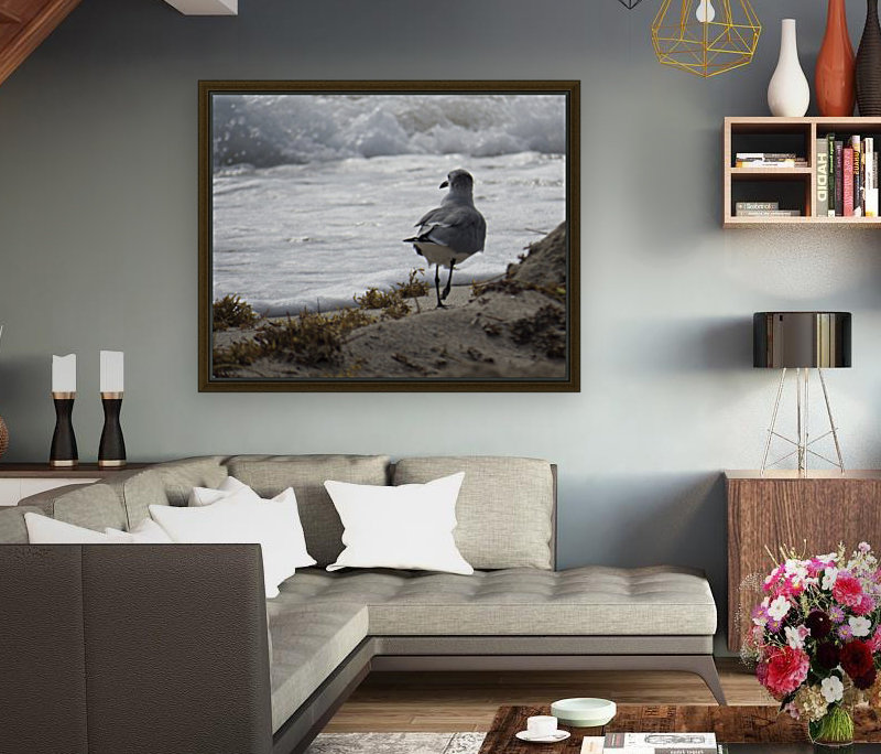 Seagull running  Art