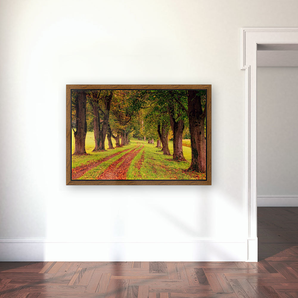 tree, avenue, nature, landscape, tree lined avenue, away, distance, trail, autumn, leaves, forest, green, mood, green leaves, lane, path,  Art