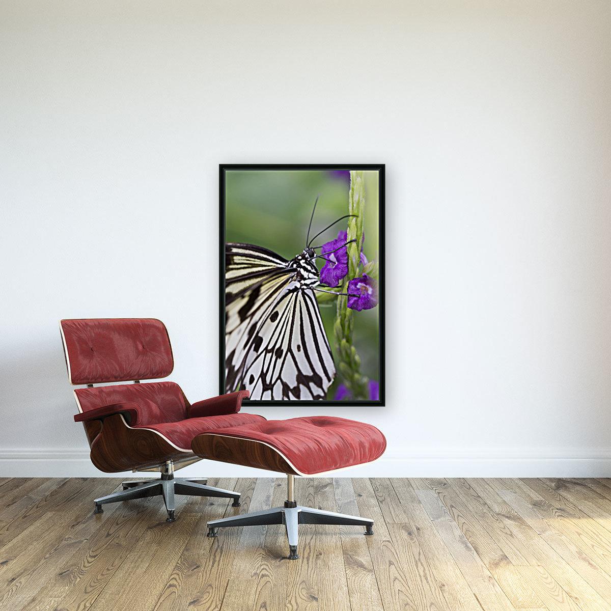 Paper Kite Butterfly  Art