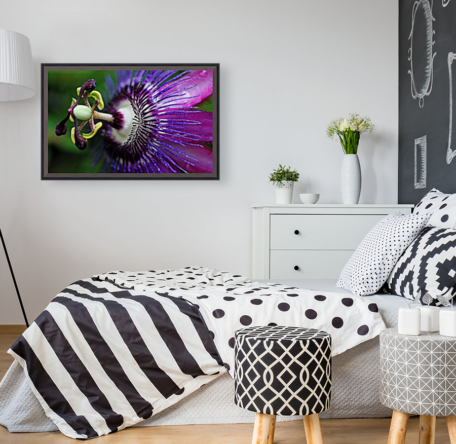 Passion Flower In Purple with Floating Frame