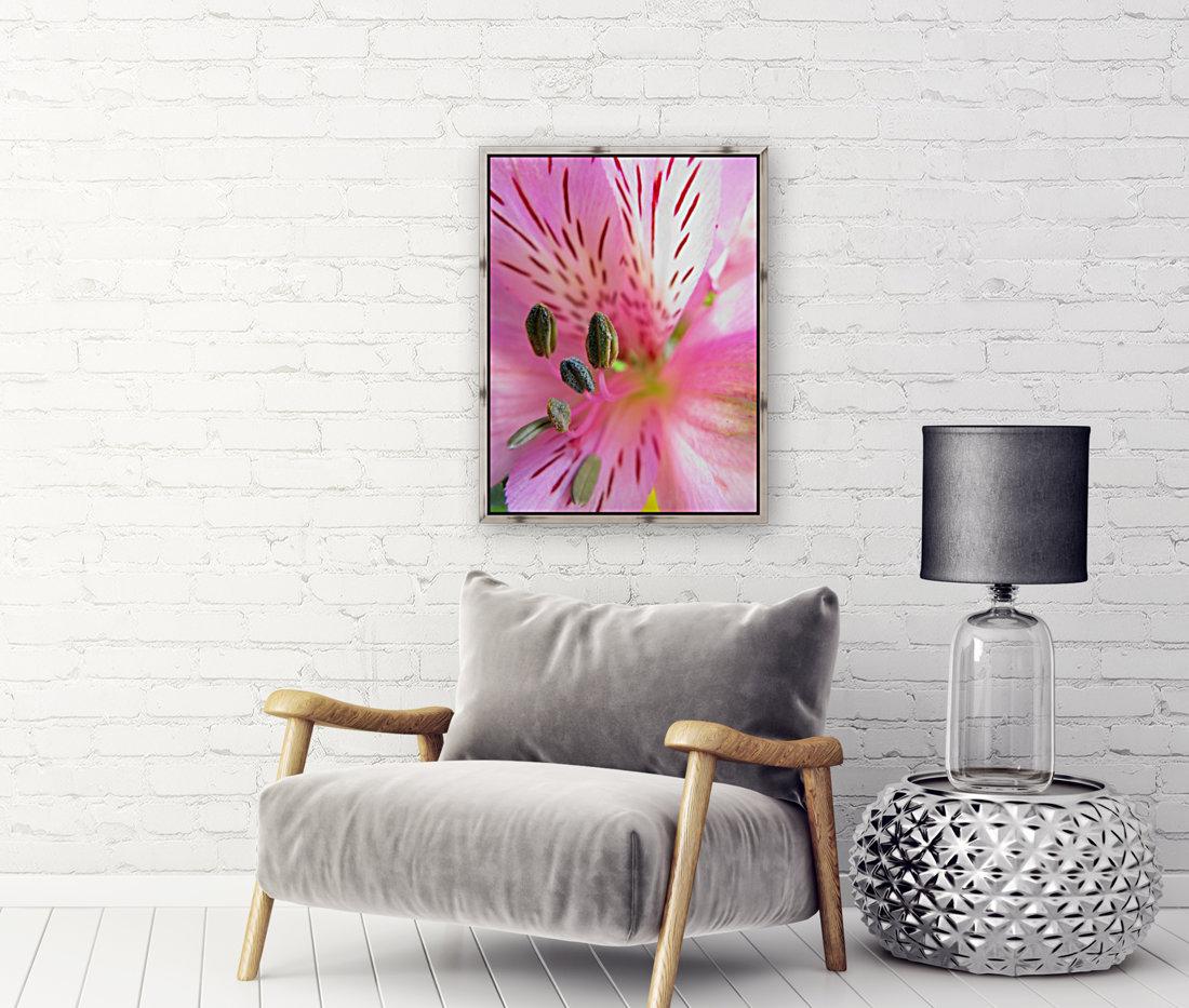 Gentle Pink  Art
