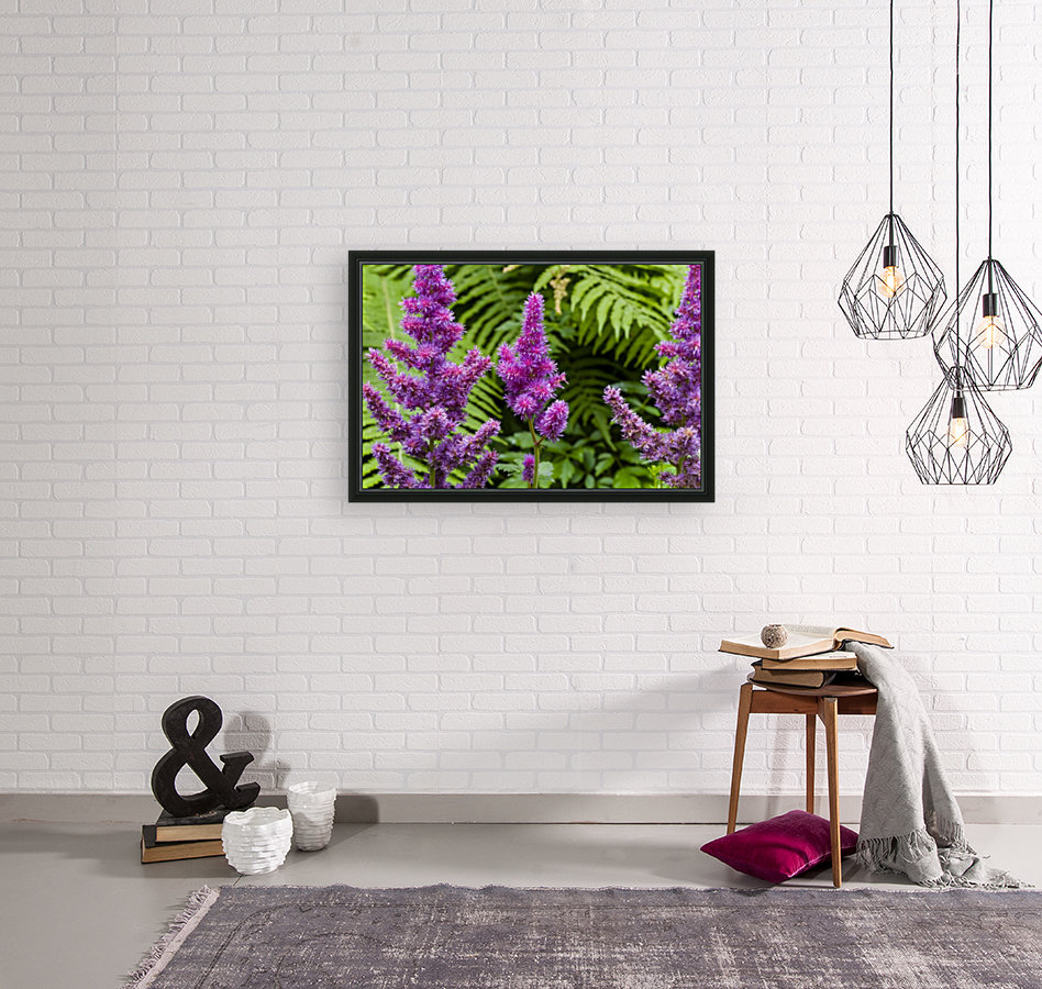 Red Astilbe 1 with Floating Frame