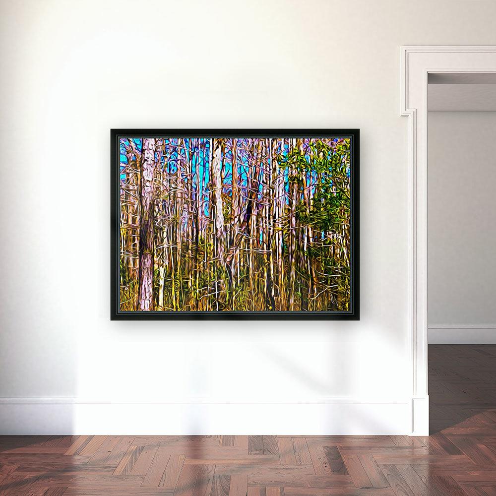 Florida Trees  Art