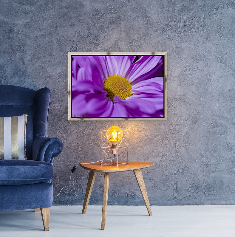 Chrysanthemum with Floating Frame