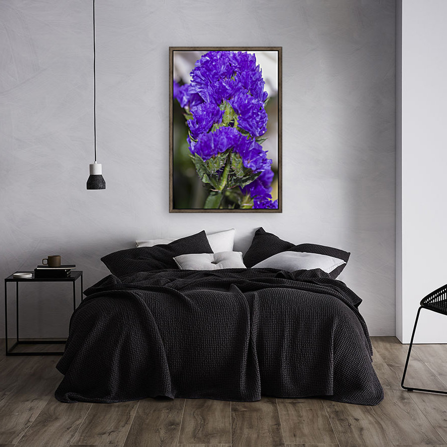 Purple Statice Flower  Art