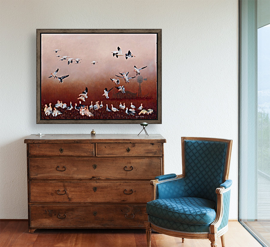 Snow Geese with Floating Frame