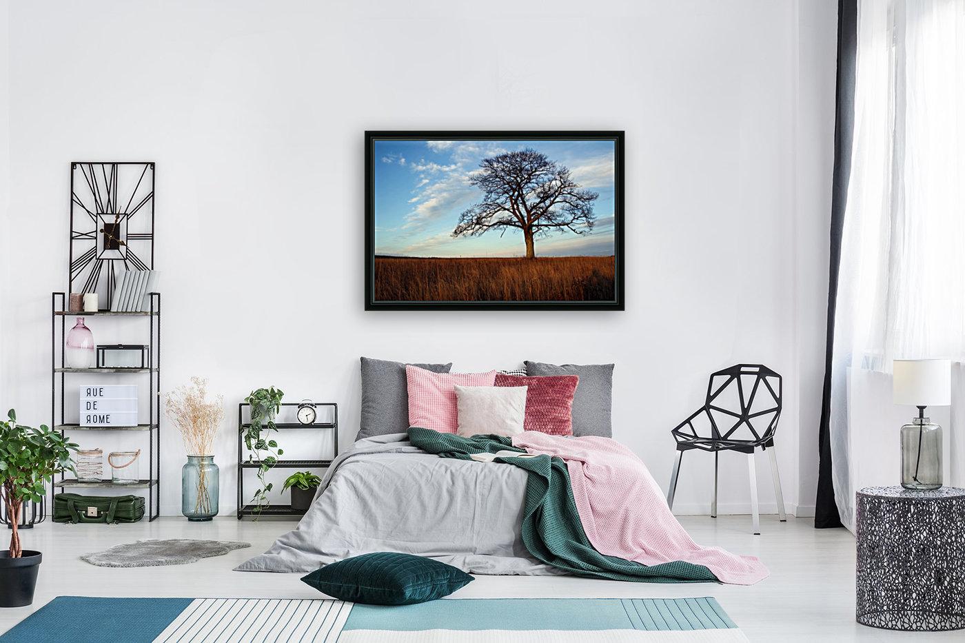Shubenacadie Tree  Art