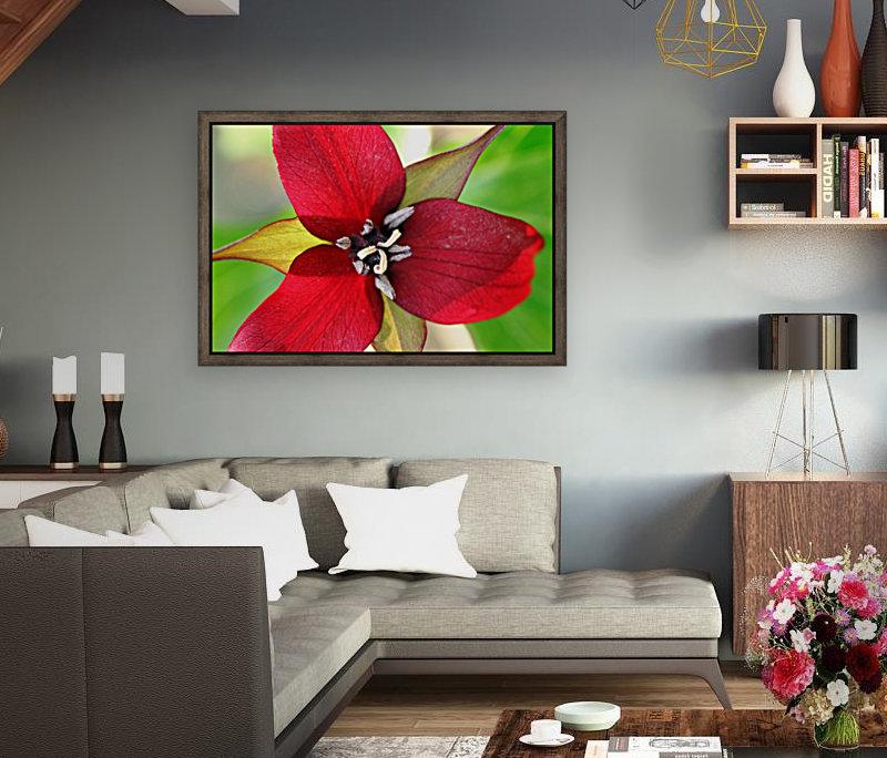 Dark Red Trillium  Art