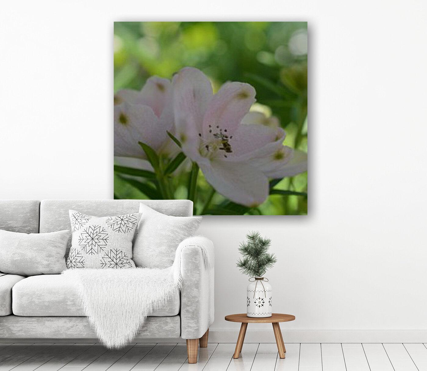 White Flowers Photograph  Art