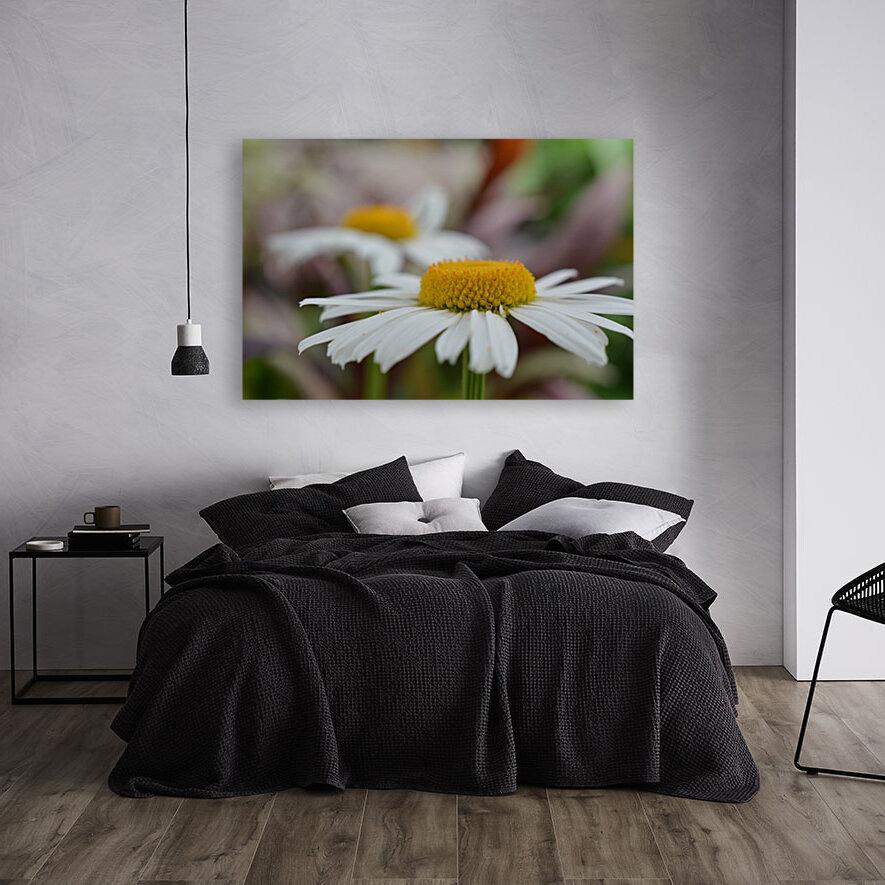 White Flower Photograph  Art