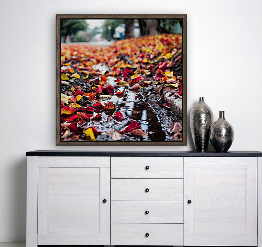 The Colors of Fall  Art