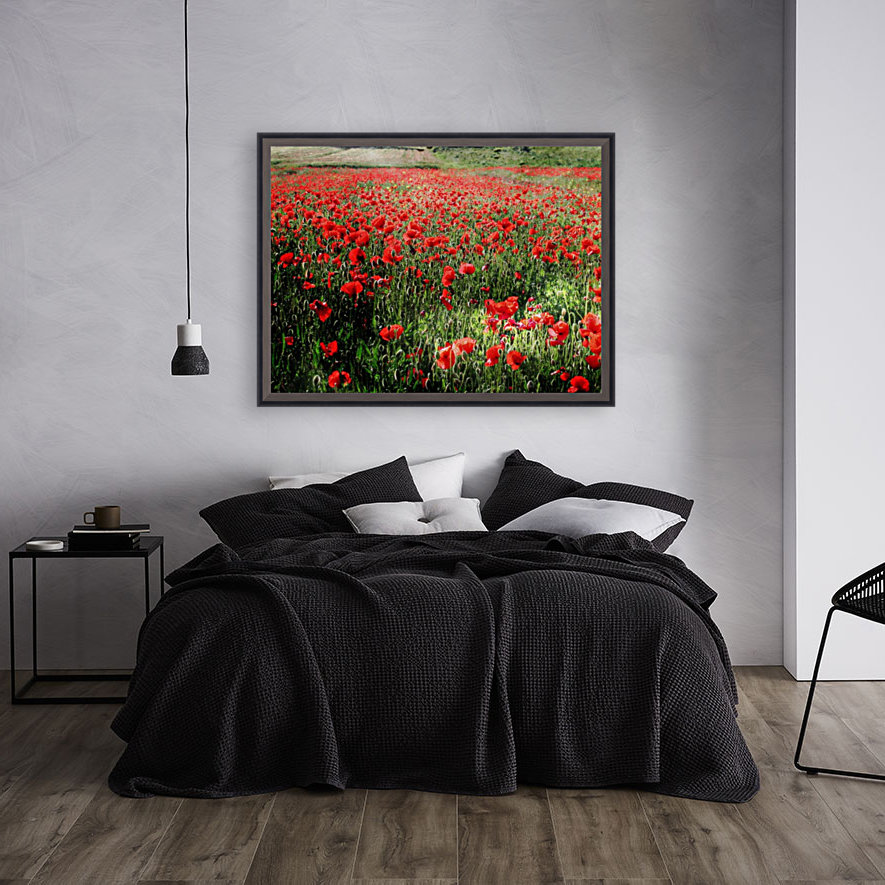 Rolling Fields with Poppies  Art
